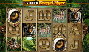 Untamed - Bengal Tiger
